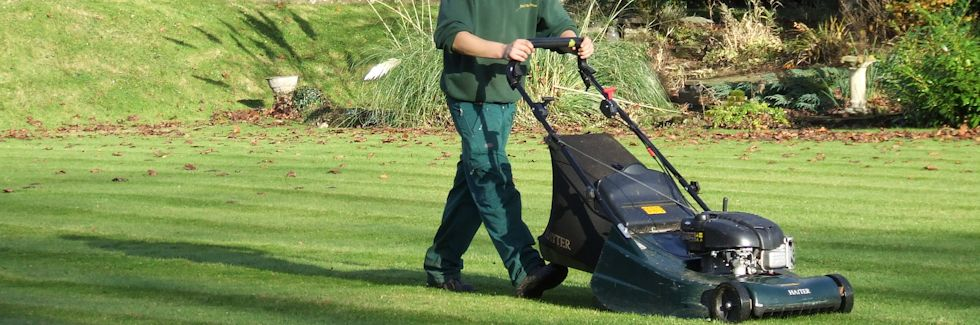 Gardening and garden maintenance norfolk and suffolk for Basic garden maintenance
