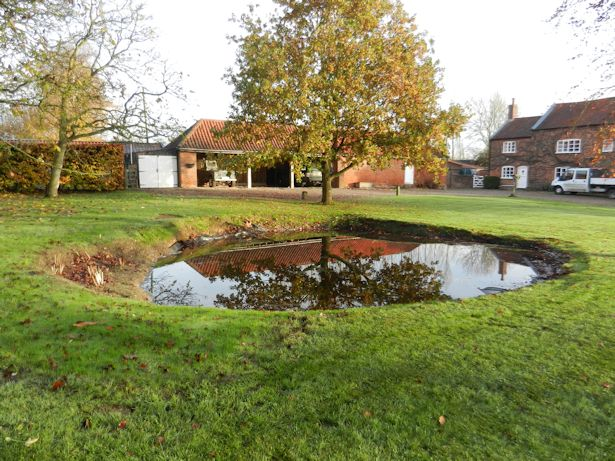 Case Study - Pond Clearance and Reinstatement of new pond with liner