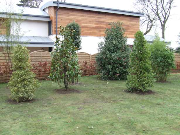 Garden design norwich landscaping norwich and garden for Garden room designs norwich