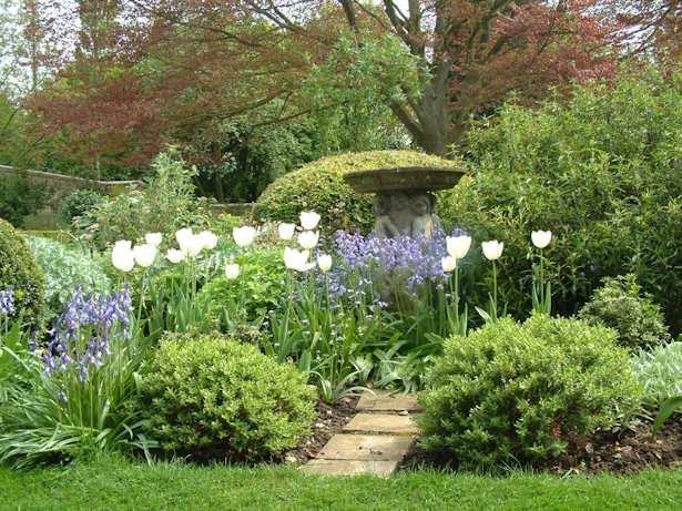 Image Result For Gardening Services Wymondham