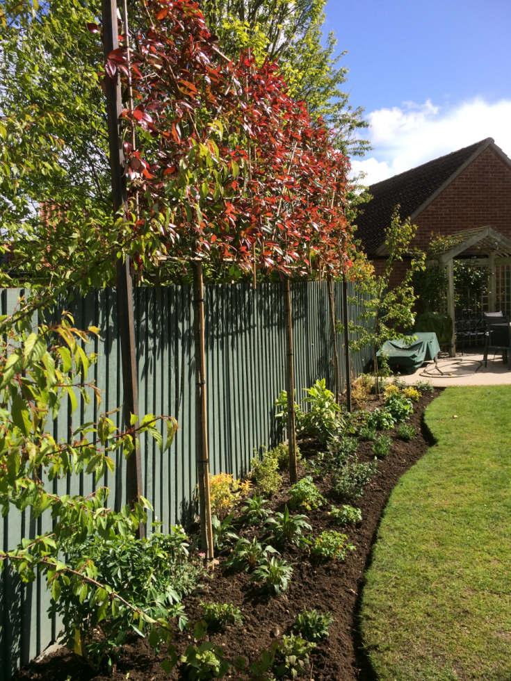 Completed Garden Designs Landscaping Garden Maintenance
